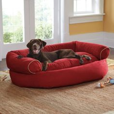 Best Couch Dog Bed 72 For Sofas and Couches Set with Couch Dog Bed