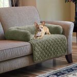 Fancy Dog Couch Cover 94 In Sofa Room Ideas with Dog Couch Cover