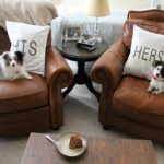 Elegant Dog Leather Couch 49 Office Sofa Ideas with Dog Leather Couch