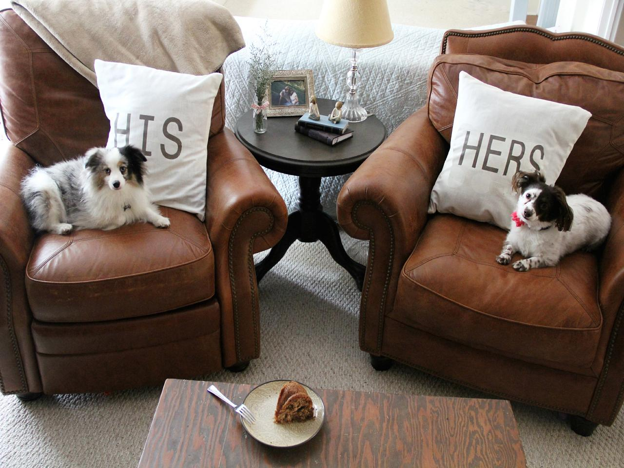 Inspirational Leather Couches And Dogs 48 On Sofas and Couches Ideas with Leather Couches And Dogs